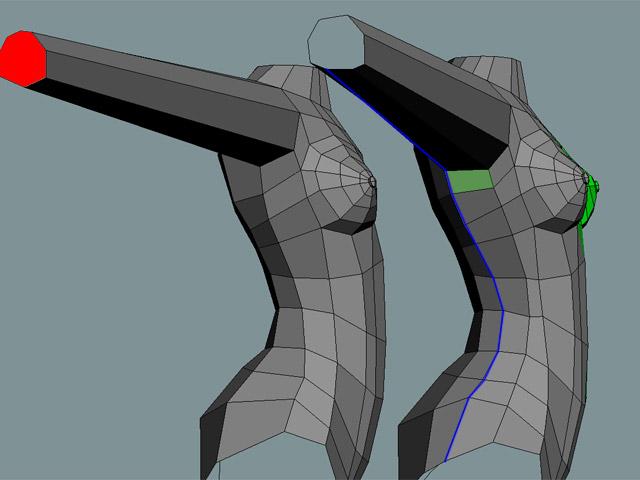 Добавляя грани моделируется грудь необходимой формы и размера